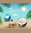 summer banner for promoting sale relaxing vector image vector image