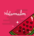 watermelon fruit delicious shiny poster vector image