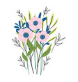 bunch flowers floral decoration herb wild botany vector image