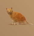 fat yellow triangle Cat vector image