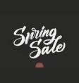 hand drawn lettering spring sale elegant modern vector image vector image