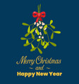 merry christmas with hanging mistletoe vector image