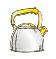 teapot for cook hot drink kitchenware color vector image