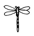 dragonfly doodle hand drawn vector image vector image