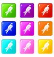 falcon set 9 vector image vector image