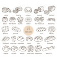 isolated sketches of bread types vector image