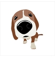 Jack Russell Terrier with large head and nose vector image vector image