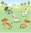 set calf cow vector image vector image