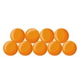 soft tasty ripe apricots in neat rows isolated vector image vector image