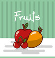 apple and mango cherry fruits fresh juicy collage vector image