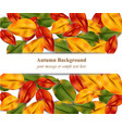 autumn leaves on white background realistic vector image vector image