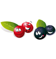 Blueberry and Cranberry cartoon vector image vector image