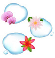 flowers in water vector image vector image