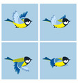 flying great tit animation sprite sheet vector image vector image