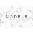 marble background with silver texture vector image