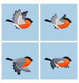 flying bullfinch male animation sprite sheet vector image vector image