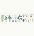 green plants in pots gardening tools set isolated vector image