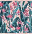 strelitzia tropical flower seamless pattern vector image