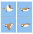 flying bird animation sprite sheet vector image vector image