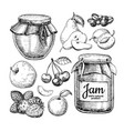 fruit jam glass jar drawing jelly and vector image