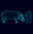 set with wireframe hippopotamus of blue lines on a vector image vector image