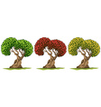 Trees in three different color leaves vector image