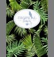 tropic leaf banner vector image vector image