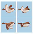 cartoon flying house sparrow female animation vector image vector image