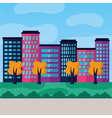 cityscape urban buildings tree park meadow vector image