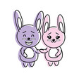 cute couple rabbit wild animal with beautiful vector image vector image