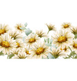 daisy flowers background watercolor summer decor vector image vector image