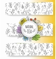 Herbal tea banners collection Organic herbs and vector image