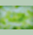 nature green blurred background vector image