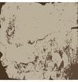shabpaper vector image