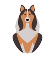 Shepherd retriever dog animal vector image vector image