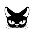 cat black isolated pet on white background vector image