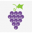 berries grape with liveas on transparent vector image