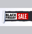black friday sale action banner poster sellings vector image