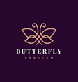 butterfly logo icon vector image vector image