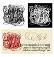 decorative gothic letter a uncial fraktur vector image