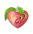 red tin can heart with ring pull top view modern vector image