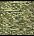 seamless pattern hand drawn asparagus vector image