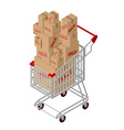 Shopping cart and box sale isometric Shopping at vector image vector image