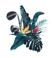 tropical flowers palm leaves jungle leaf vector image vector image