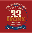 athletic legendary new york vector image vector image