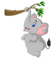 cartoon funny elephant playing on a tree branch vector image vector image