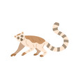 cute and funny lemur with striped long tail raised vector image vector image