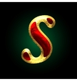 golden and red letter s vector image vector image