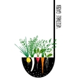 Grow Vegetable Garden and Cook Soup vector image vector image