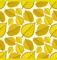 seamless pattern with elm and linden autumn leaves vector image